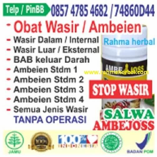 Paket Stop wasir